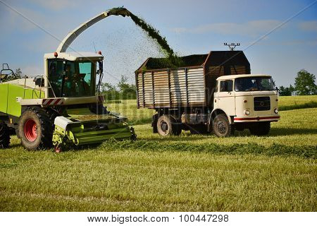 Combine Harvester Mows The Field, Harvester Unloading Into A Tractor Trailer, Slovakia