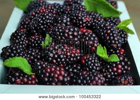 Heap of sweet blackberries with mint in box close up