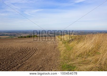 Vale Of York From Hillside Field