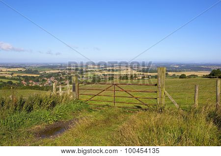 Metal Gate With A View