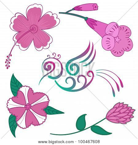Tropical Flowers Set Hummingbird flower vector Exotic flowers and bird Hibiscus Hawaii