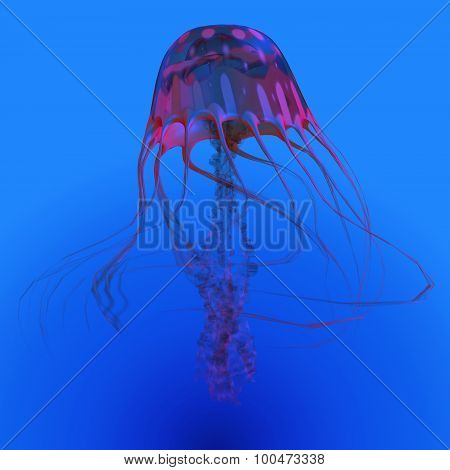 Red Glowing Jellyfish