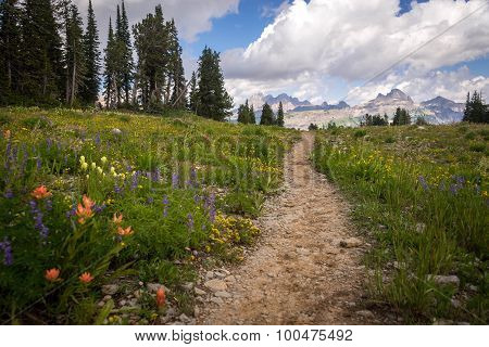 Grand Teton Hiking Trail