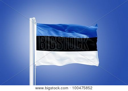 Flag of Estonia flying against a blue sky.
