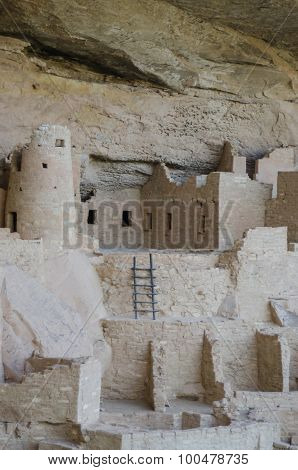 Mesa Verde Ladder Vertical