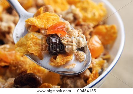 Spoon filled with milk and breakfast cereal with dried fruit