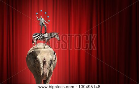 Young businessman in cap standing on animals and juggling with balls