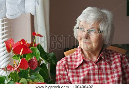 Senior woman sitting and looking out the window