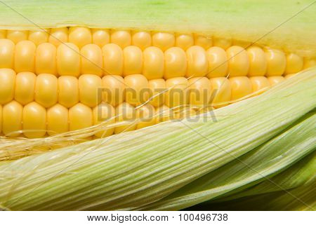 Ripe Fruit Of Corn On A Wooden Surface