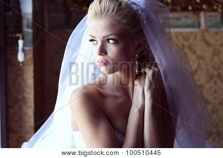 Gorgeous Bride With Veil Posing