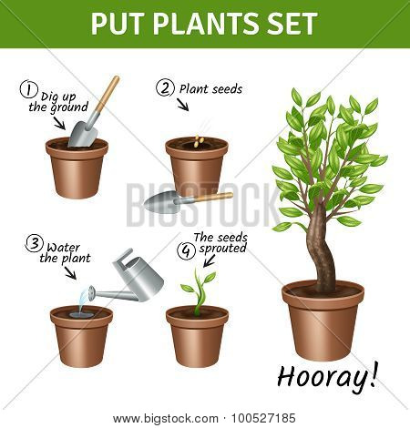 Putting  Plants Icons Set
