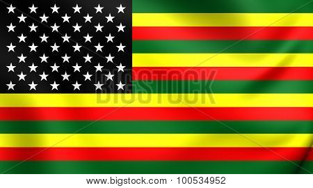 Flag Of African America