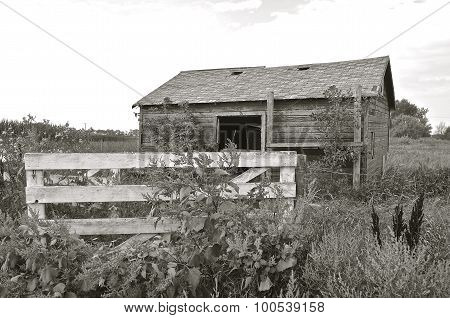 Fenced in old wooden shed(black and white)