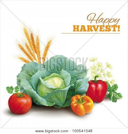 Harvest composition on white. Vector illustration.