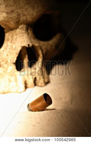 Skull And Cartridge