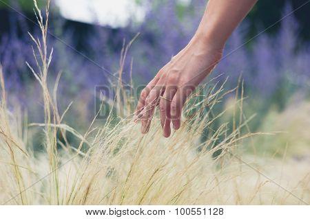 Female Hand Touching Grass
