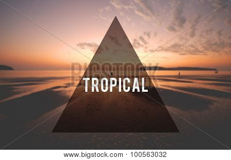 Summer Beach Friendship Holiday Tropical Vacation Concept