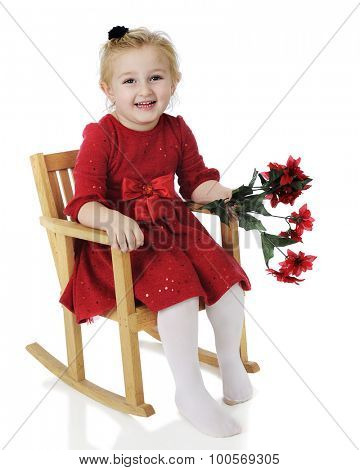 An adorable preschooler dressed up for Christmas.  She's happily sitting in a child-sized rocker holding a bouquet of poinsettias.  On a white background.