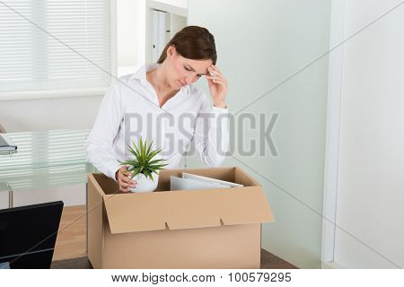 Businesswoman Packing Her Belongings In Box