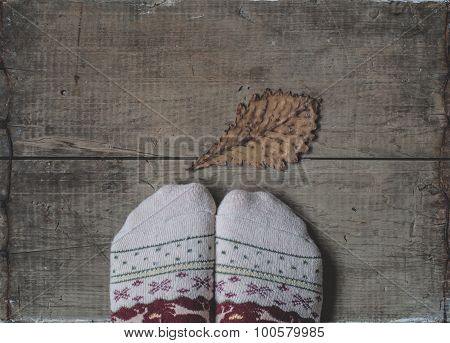 Legs In Knitted Woolen Socks And Oak Leaf