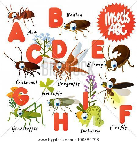 Cute vector animals ABC: Insects: ant, bedbug, earwig, cockroach, dragonfly, inchworm, horsefly, firefly, grasshopper