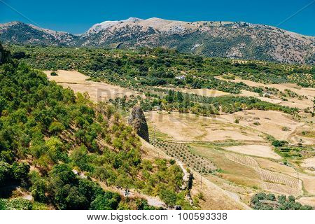 Summer Andalusian Lanscape Near Ronda, Spain