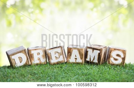 Dreams Sign Made Of Wooden Blocks On A Grass