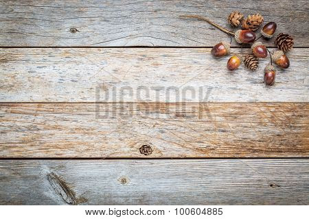 weathered barn wood background with acorns and cones fall decoration