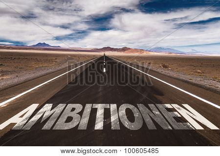 Ambitions (in German) written on desert road