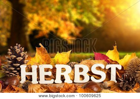 German Word For Autumn