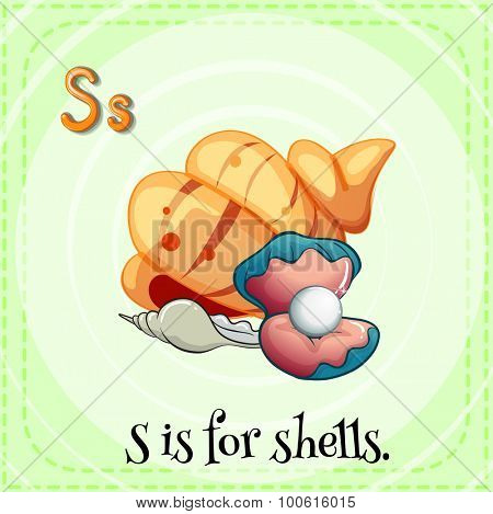 Flashcard letter S is for shells