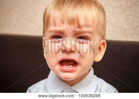 Little Boy Crying Out Loud, Close-up Portrait