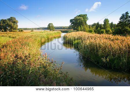 Elk River estuary