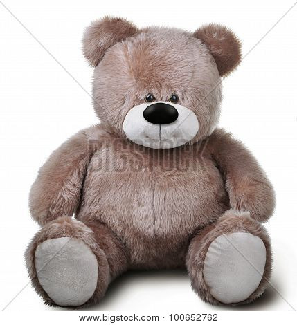 Toy Soft Teddy Bear
