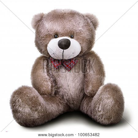 Toy Soft Teddy Bear With Bow