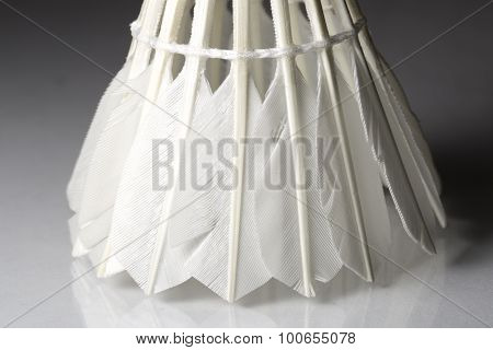 Feathered White Shuttlecock