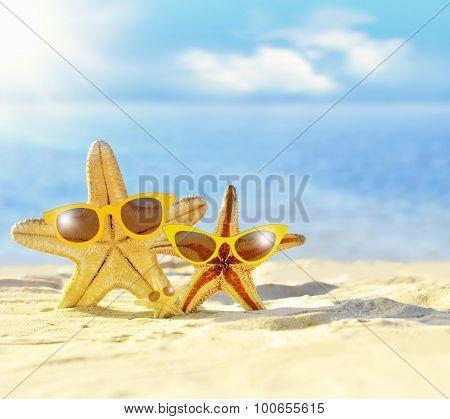 Starfish in sunglasses on the seashore. Beach.