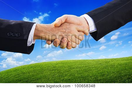 Business People Agreement Handshake Partner Concept