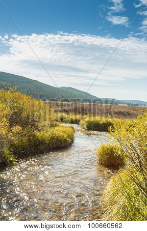 Creek Flowing Through Yellowstone National Park.