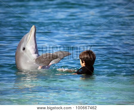 Kid and cute dolphin jumping out of the blue water
