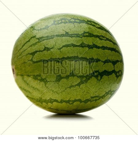 Big Water-melon