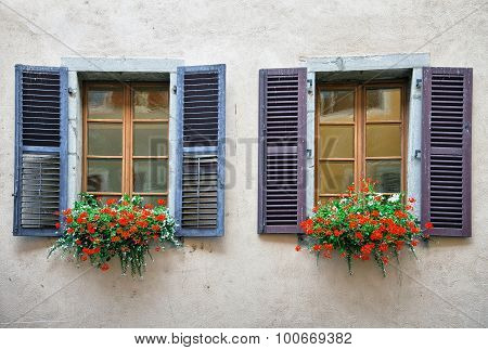 Flowers and old windows on plastered brick wall