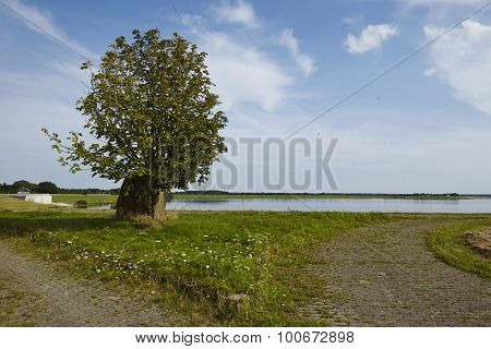 Alfhausen (germany) - Alfsee (lake)