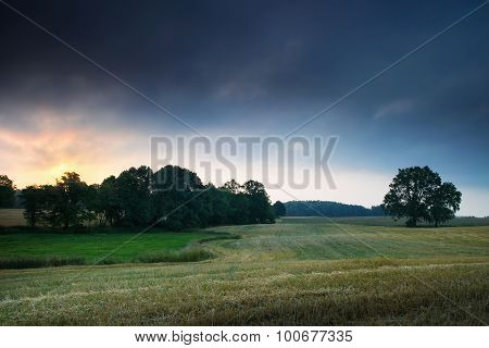 Landscape with oaks 6