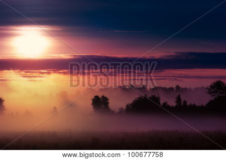 misty sunrise over meadow2