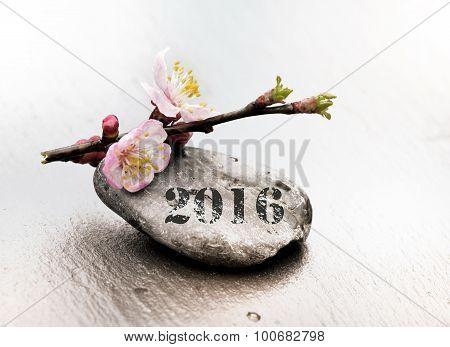 Wellness 2016