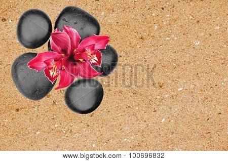 Black Spa Stones And Pink Orchid Flower Over Yellow Sand Background