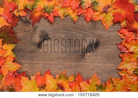 colorful maple leaves frame