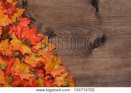 pile maple leaves in corner