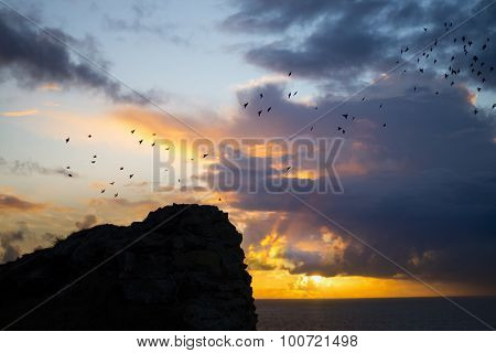 Flocks Of Starlings Flying Above Ruins At Sunset